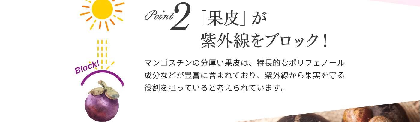 Point2 「果皮」が紫外線をブロック!